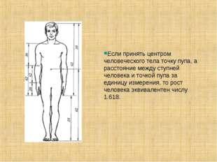 Если принять центром человеческого тела точку пупа, а расстояние между ступне