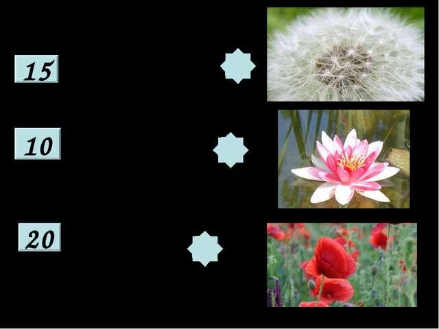 15 10 20 Есть один такой цветочек, Не вплетёшь его в веночек. На него подуй с...