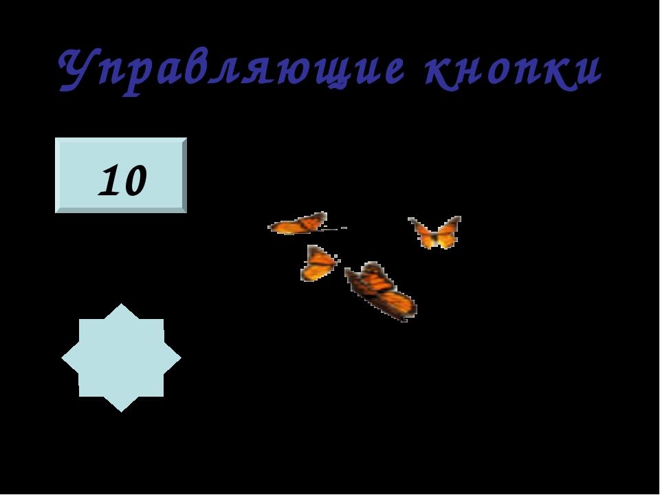 Управляющие кнопки 10 — КНОПКА «ВЫБОР ЗАГАДКИ» — КНОПКА «ПРОВЕРКА ОТВЕТА»