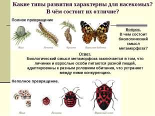 Какие типы развития характерны для насекомых? В чём состоит их отличие? Вопро