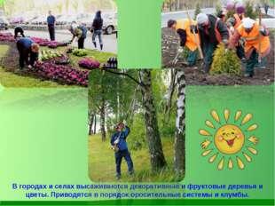 В городах и селах высаживаются декоративные и фруктовые деревья и цветы. Прив
