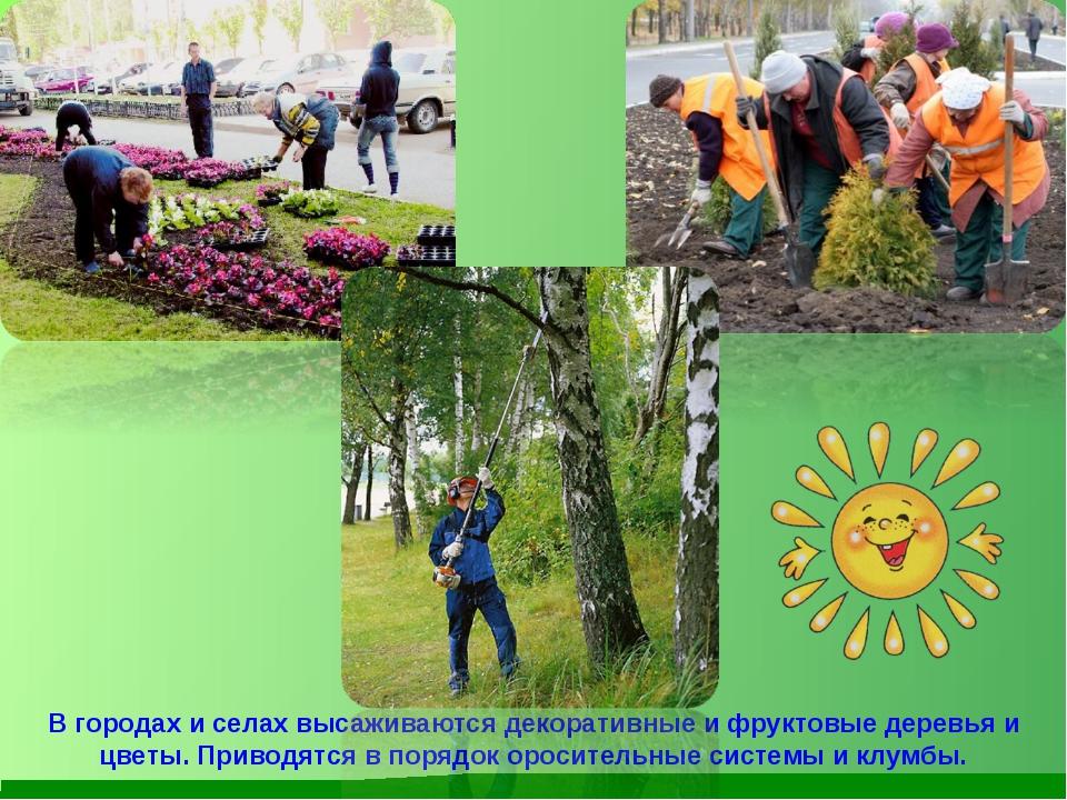 В городах и селах высаживаются декоративные и фруктовые деревья и цветы. Прив...