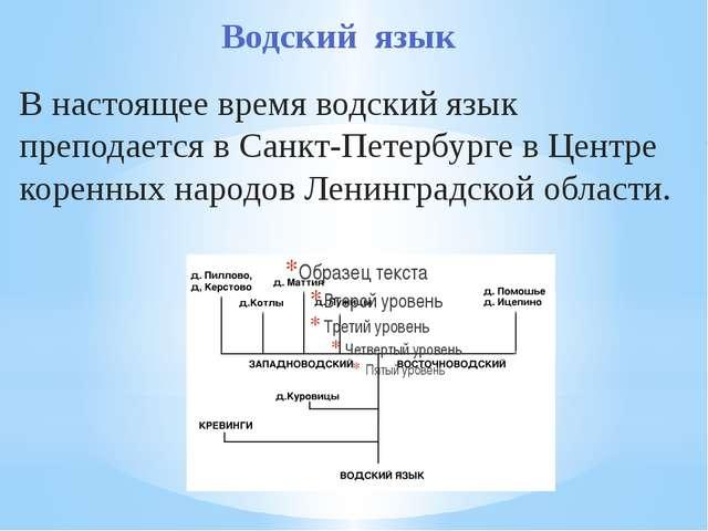 Водский язык В настоящее время водский язык преподается в Санкт-Петербурге в...
