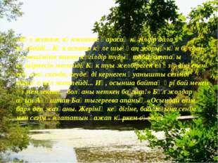 «Көз жетпес көкжиекке қарасаң көгілдір дала көлбейді... Көк аспаны күле шыққ