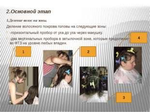 2.Основной этап 1.Деление волос на зоны. Деление волосяного покрова головы на