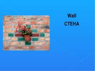 Wall СТЕНА