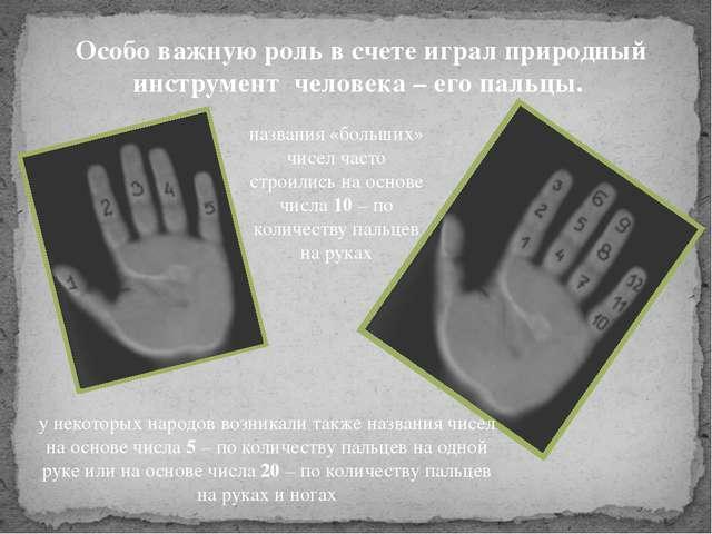 Особо важную роль в счете играл природный инструмент человека – его пальцы. н...
