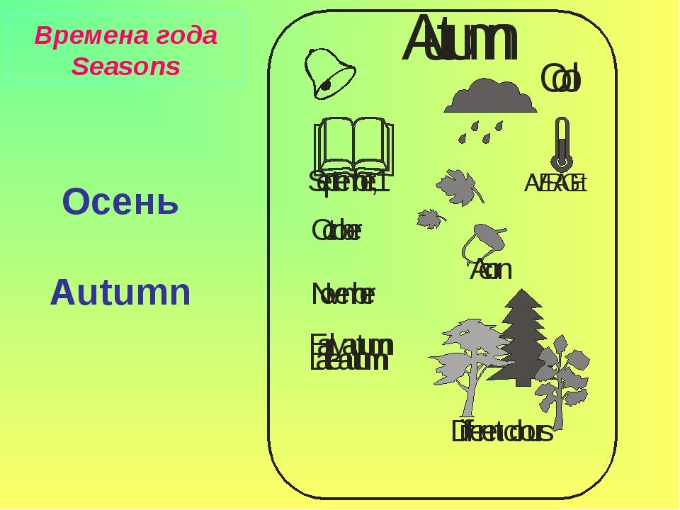 Осень Autumn Времена года Seasons