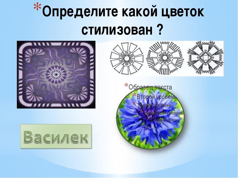 Определите какой цветок стилизован ?