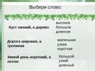 Выбери слово: Куст низкий, а дерево Дорога широкая, а тропинка Зимой день кор
