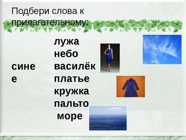 Подбери слова к прилагательному: синее лужа небо василёк платье кружка пальто...