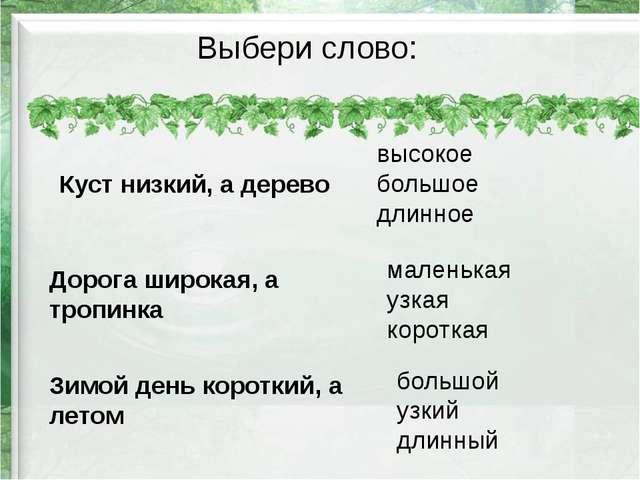 Выбери слово: Куст низкий, а дерево Дорога широкая, а тропинка Зимой день кор...