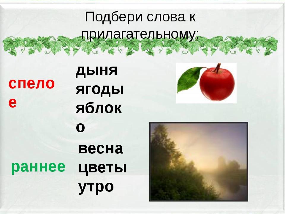 Подбери слова к прилагательному: спелое дыня ягоды яблоко раннее весна цветы...