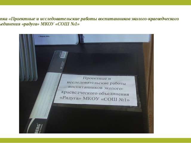 Папка «Проектные и исследовательские работы воспитанников эколого-краеведческ...