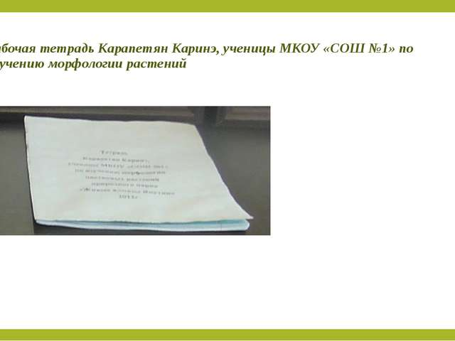 Рабочая тетрадь Карапетян Каринэ, ученицы МКОУ «СОШ №1» по изучению морфологи...