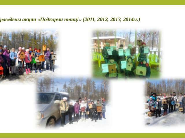 Проведены акции «Подкорми птиц!» (2011, 2012, 2013, 2014гг.)
