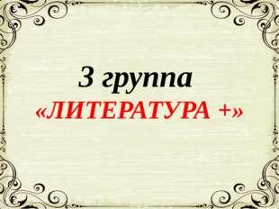 3 группа «ЛИТЕРАТУРА +»