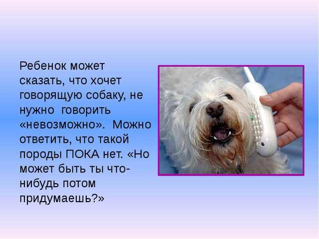 Ребенок может сказать, что хочет говорящую собаку, не нужно говорить «невозмо...