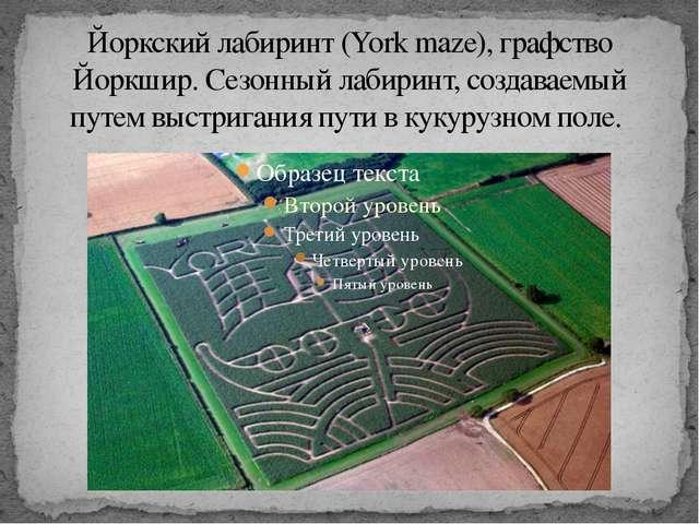 Йоркский лабиринт (York maze), графство Йоркшир. Сезонный лабиринт, создаваем...