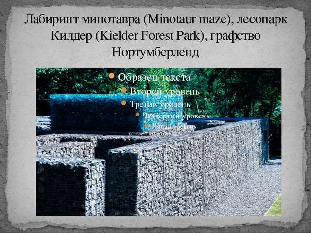 Лабиринт минотавра (Minotaur maze), лесопарк Килдер (Kielder Forest Park), гр...