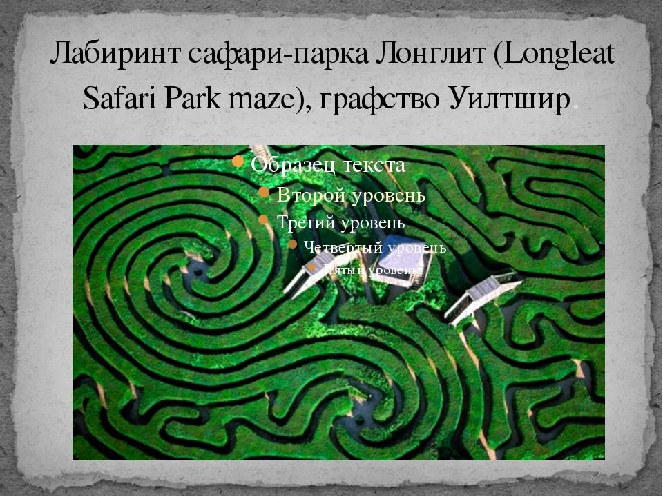 Лабиринт сафари-парка Лонглит (Longleat Safari Park maze), графство Уилтшир.