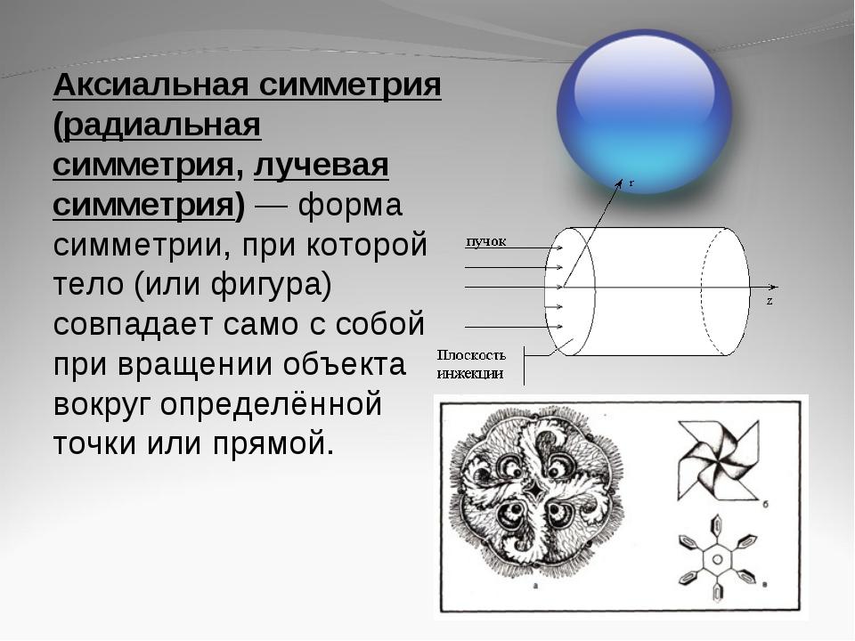 Аксиальная симметрия (радиальная симметрия, лучевая симметрия)— форма симмет...