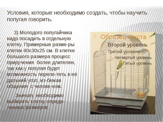 Условия, которые необходимо создать, чтобы научить попугая говорить. 3) Молод...