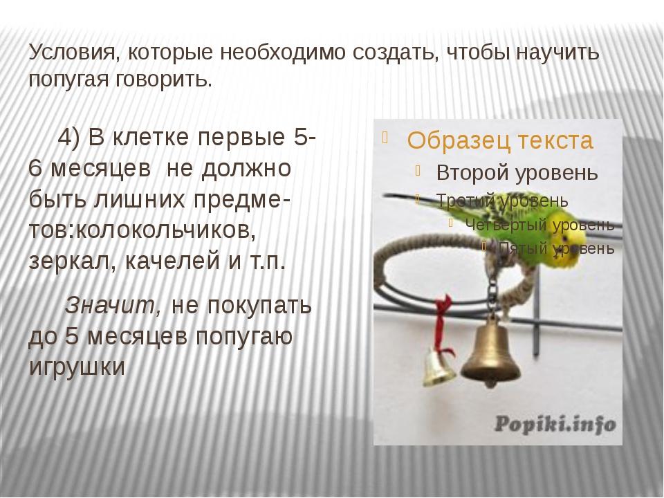 Условия, которые необходимо создать, чтобы научить попугая говорить. 4) В кле...