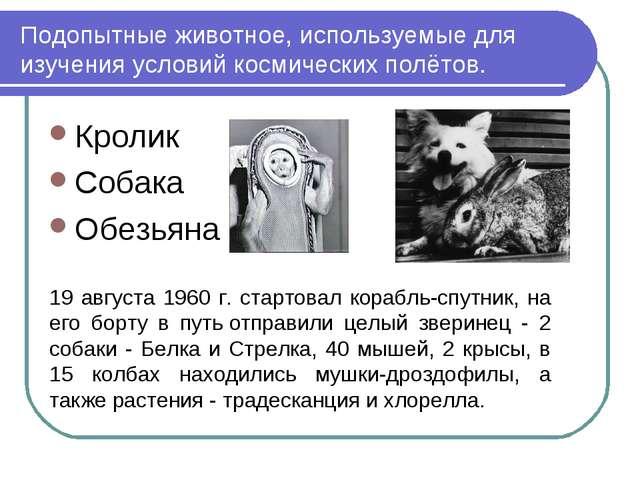 Подопытные животное, используемые для изучения условий космических полётов. К...