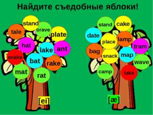 Найдите съедобные яблоки! [ei] [æ] lamp tale rake bag lake map plate tram mat
