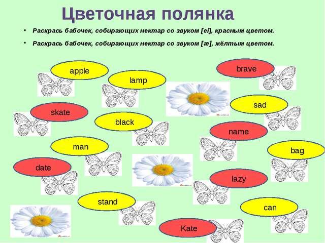 Раскрась бабочек, собирающих нектар со звуком [ei], красным цветом. Раскрась...