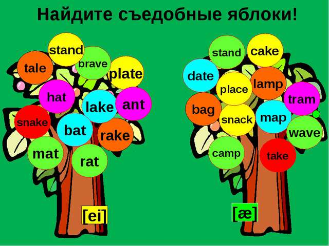 Найдите съедобные яблоки! [ei] [æ] lamp tale rake bag lake map plate tram mat...