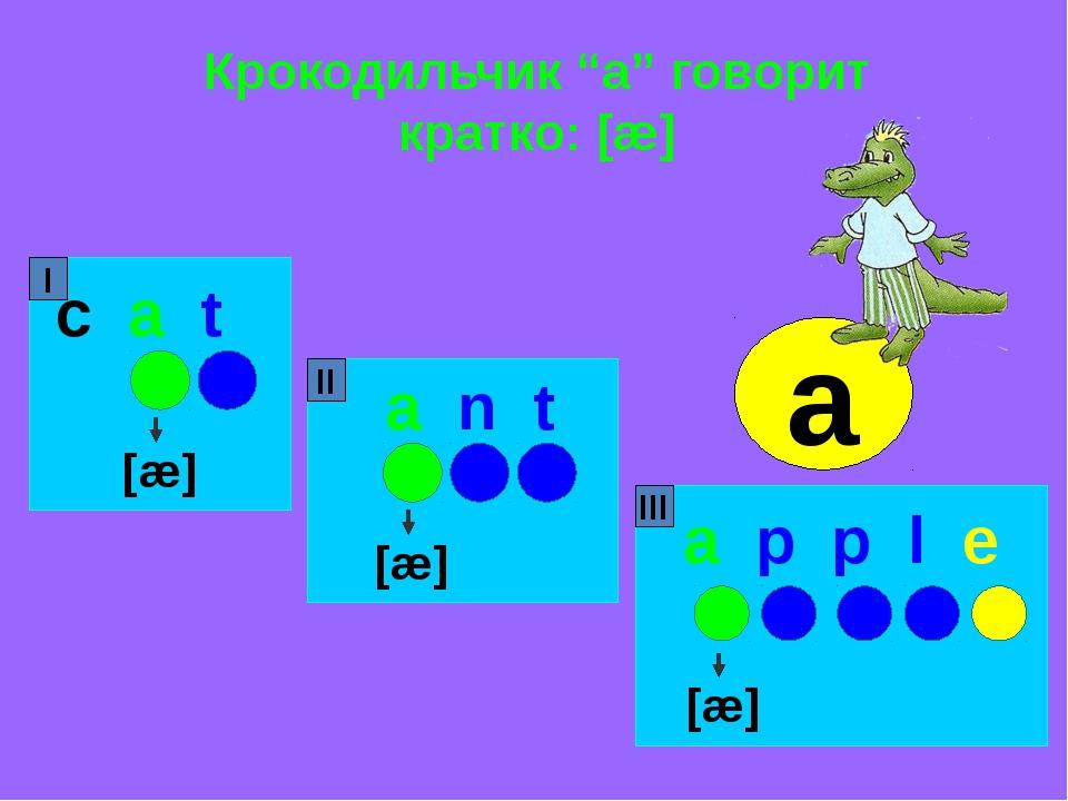 """Крокодильчик """"a"""" говорит кратко: [æ] c a t a n t a p p l e [æ] [æ] [æ] I II I..."""