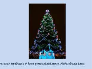 Согласно традиции в доме устанавливается Новогодняя ёлка.
