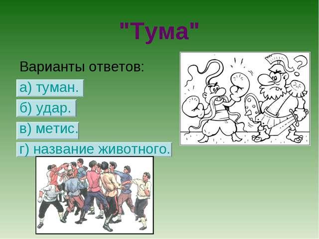 """""""Тума"""" Варианты ответов: а) туман. б) удар. в) метис. г) название животного."""
