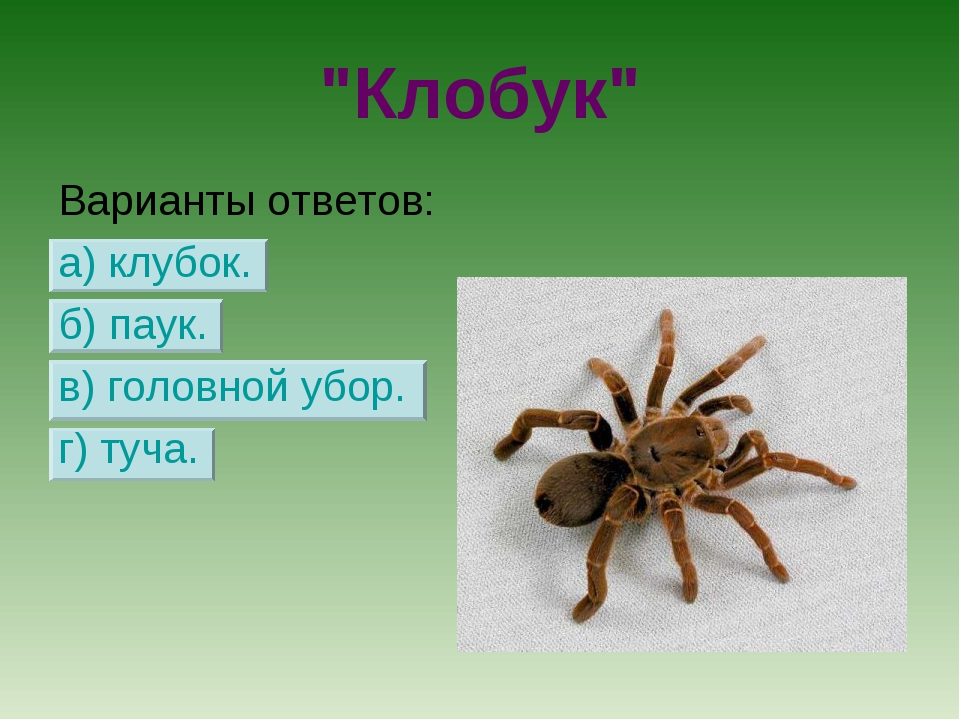 """""""Клобук"""" Варианты ответов: а) клубок. б) паук. в) головной убор. г) туча."""