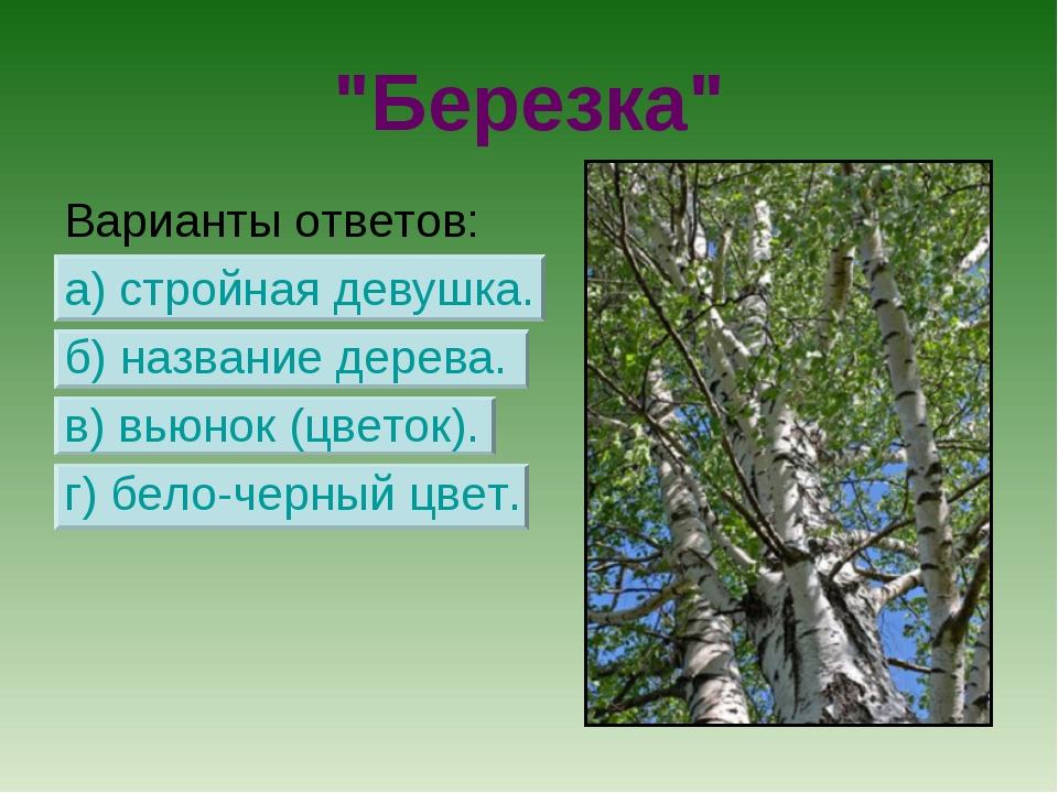 """""""Березка"""" Варианты ответов: а) стройная девушка. б) название дерева. в) вьюно..."""