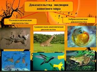 Доказательства эволюции животного мира Палеонтологические доказательства Эмбр