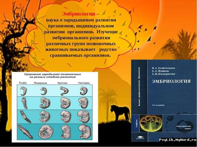 Эмбриология – наука о зародышевом развитии организмов, индивидуальном развити...