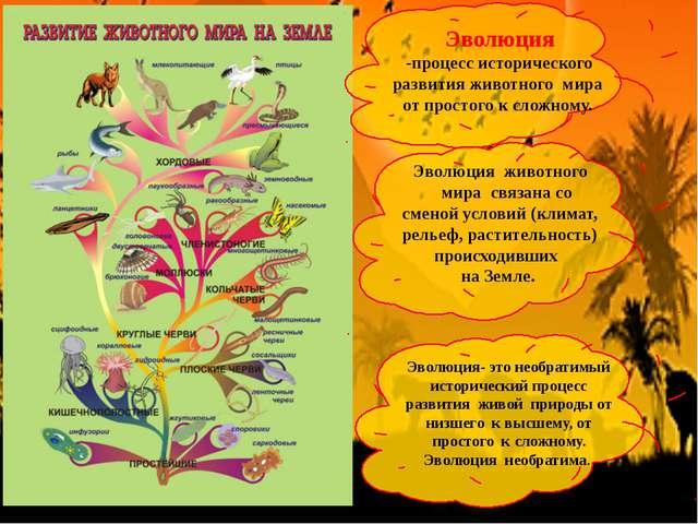 Эволюция -процесс исторического развития животного мира от простого к сложном...