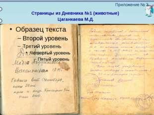 Страницы из Дневника №1 (животные) Цаганкаева М.Д. Приложение № 3