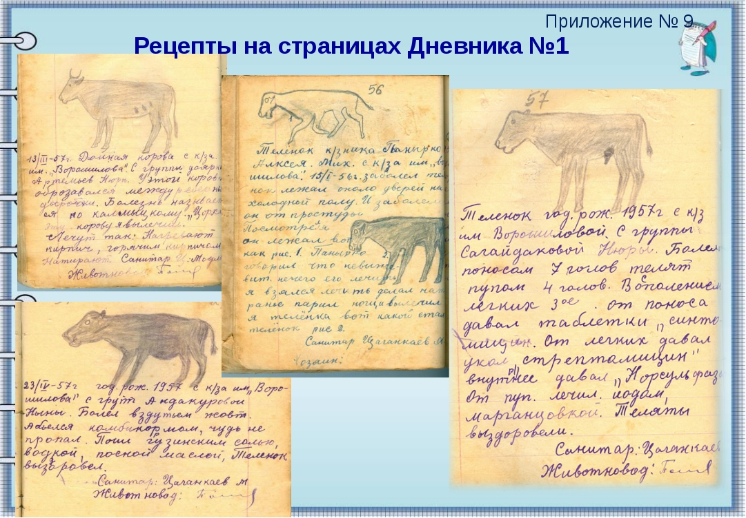 Рецепты на страницах Дневника №1 Приложение № 9