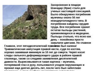 Захоронение в пещере Шанидар (Ирак) стало для ученых настоящей сенсацией. Был