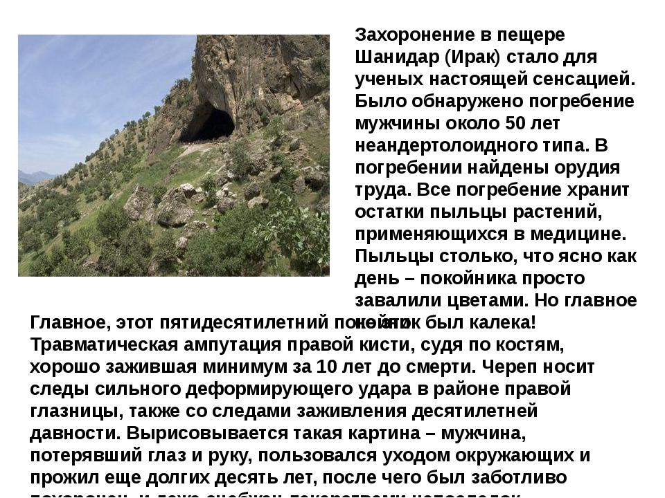 Захоронение в пещере Шанидар (Ирак) стало для ученых настоящей сенсацией. Был...