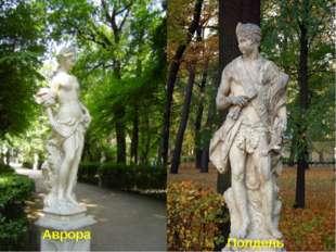 Аврора Полдень