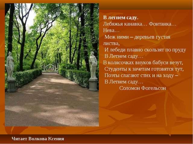В летнем саду. Лебяжья канавка… Фонтанка… Нева… Меж ними – деревьев густая ли...