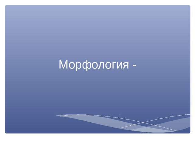 Морфология -