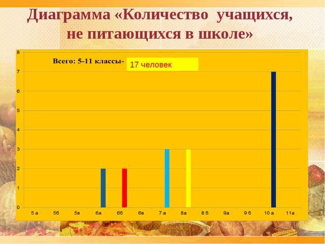 Диаграмма «Количество учащихся, не питающихся в школе» 17 человек
