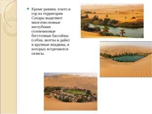 Кроме равнин, плато и гор на территории Сахары выделяют многочисленные неглуб