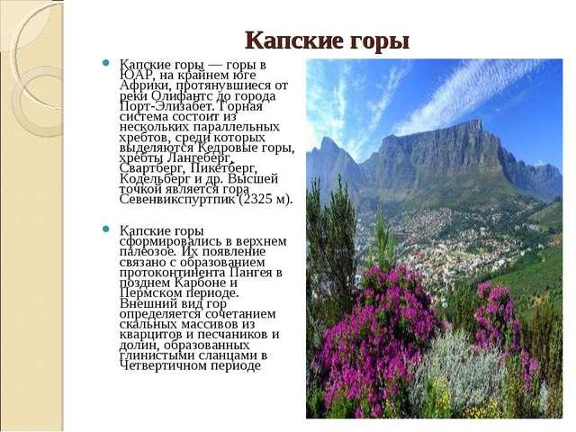 Капские горы Капские горы — горы в ЮАР, на крайнем юге Африки, протянувшиеся...